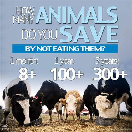 how-many-animals-do-you-save-but-not-eating-them