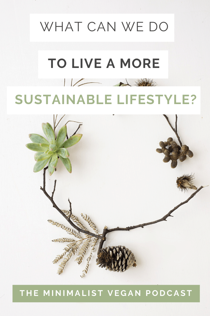 What Can We Do To Live a More Sustainable Lifestyle?