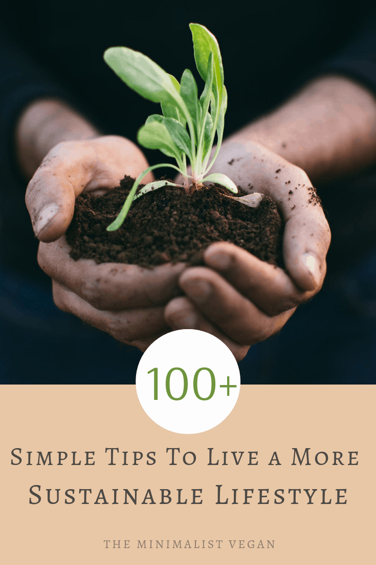 100+ Simple Tips To Live a More Sustainable Lifestyle