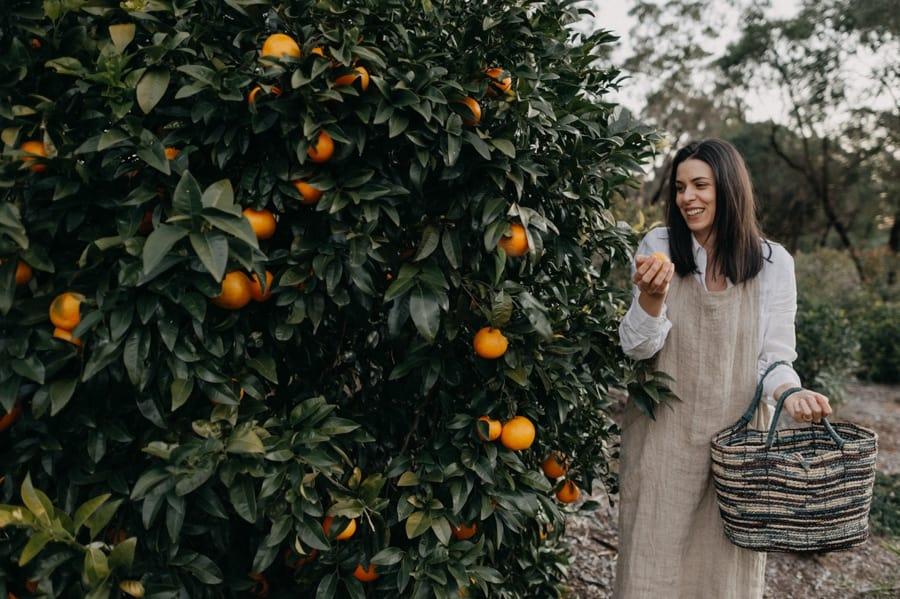 Masa with orange