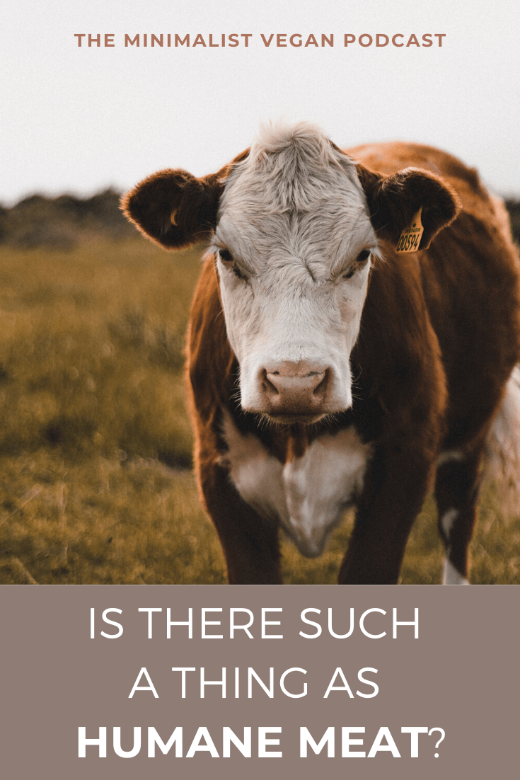 Is There Such a Thing as Humane Meat?