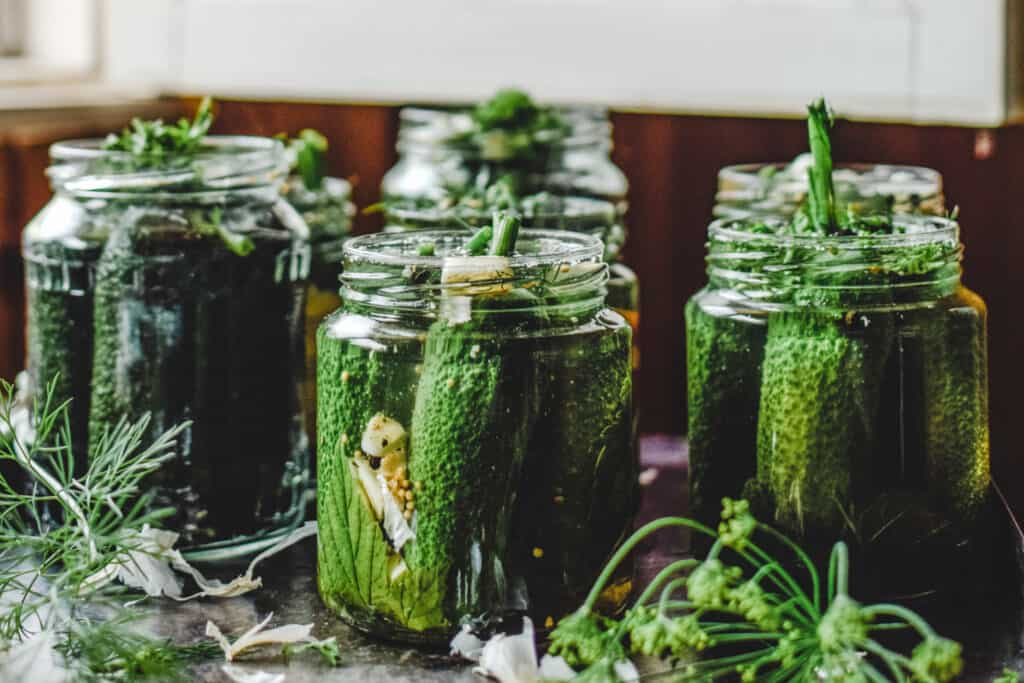 Pickling jars being filled with gherkins.